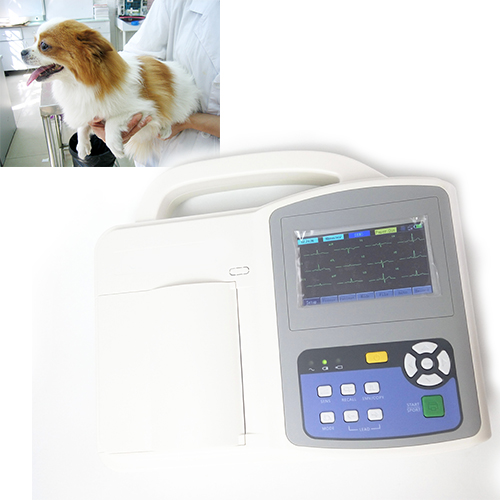 Veterinary ECG Machine